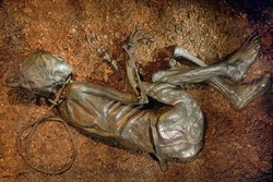 tollund man radiocarbon dating Dating danish textiles and skins from  among the most famous danish bog bodies are the tollund man,  textiles are especially suited for radiocarbon dating.